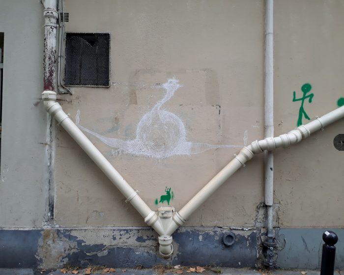 street art autruche matthieu