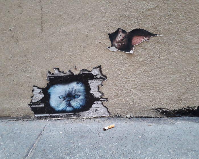 street art chat souris