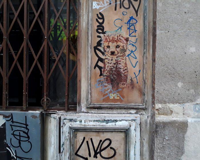 street art guepard