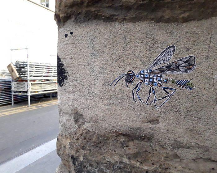street art libellule cosmo