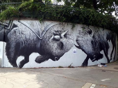street art taureau
