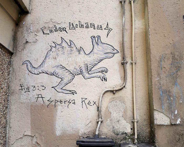 Animal par Codex Urbanus