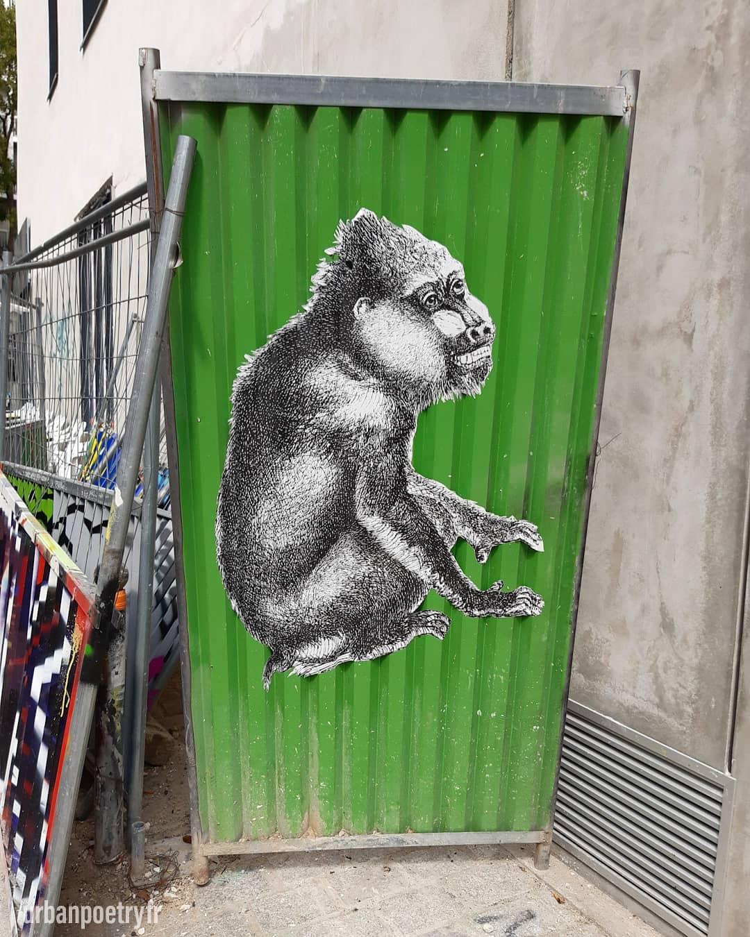 Street art par 13 Bis