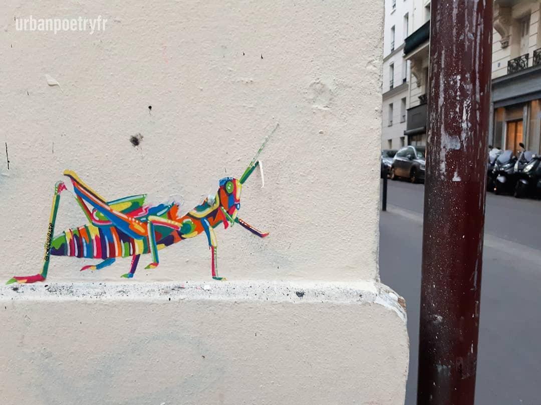 Sauterelle par Coloryourlife.boby