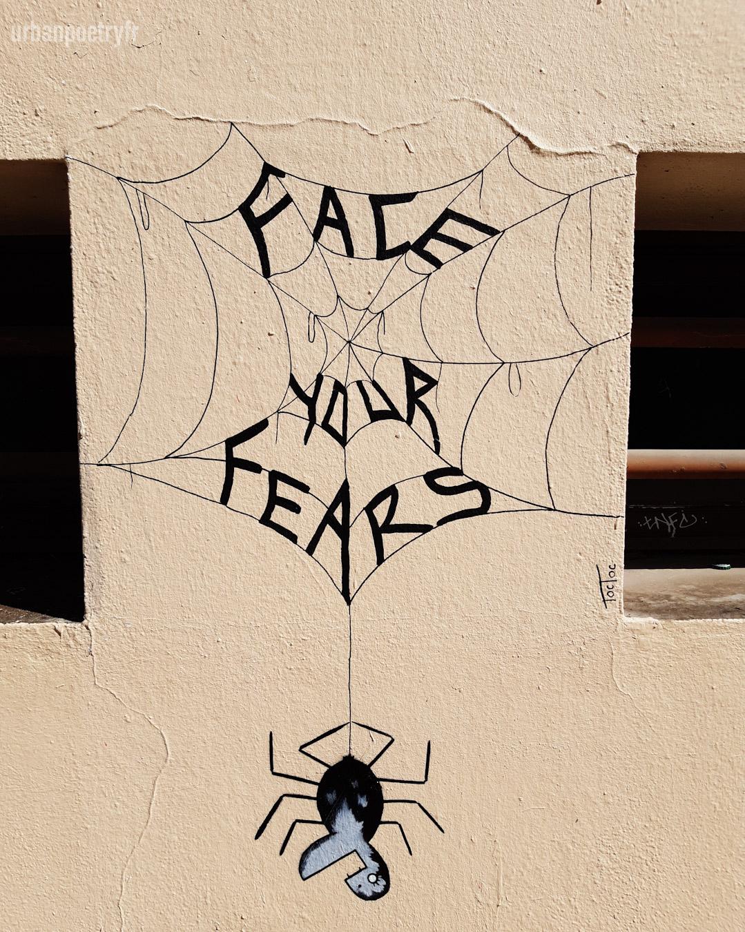 Face you fears par Toctoc