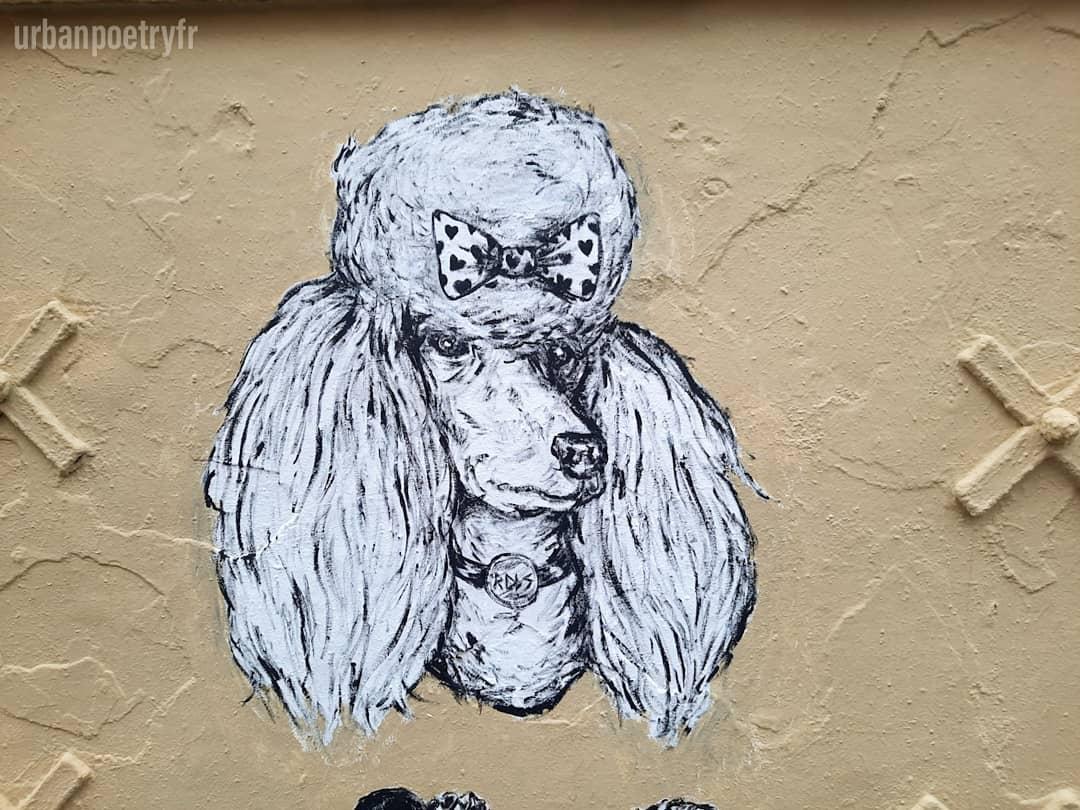 street art Kraken