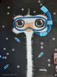 Matt-Thieu, l'as de la craie et du street art