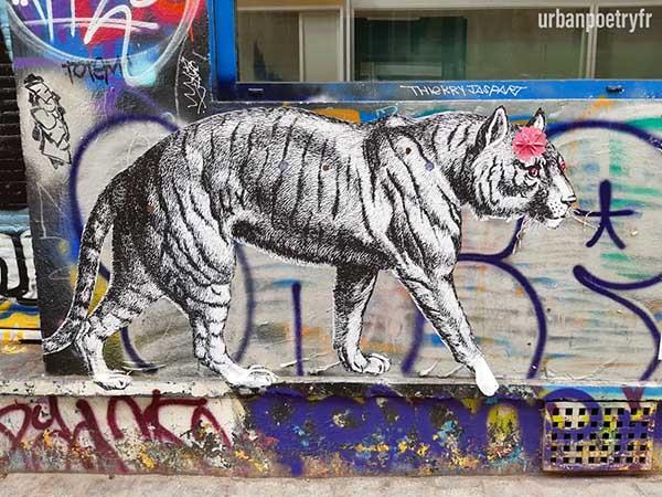 tigre par 13 bis street art urban poetry paris